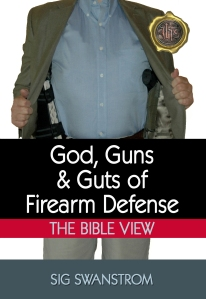 God-Guns-Guts-KindleCover-05-4