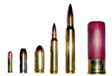 L to R: .22 LR, 9mm, .45 ACP, .223 / 5.56 mm, .30-06, 12-gauge shotshell
