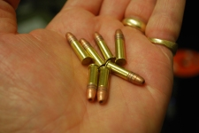 22LR Ammo in Palm